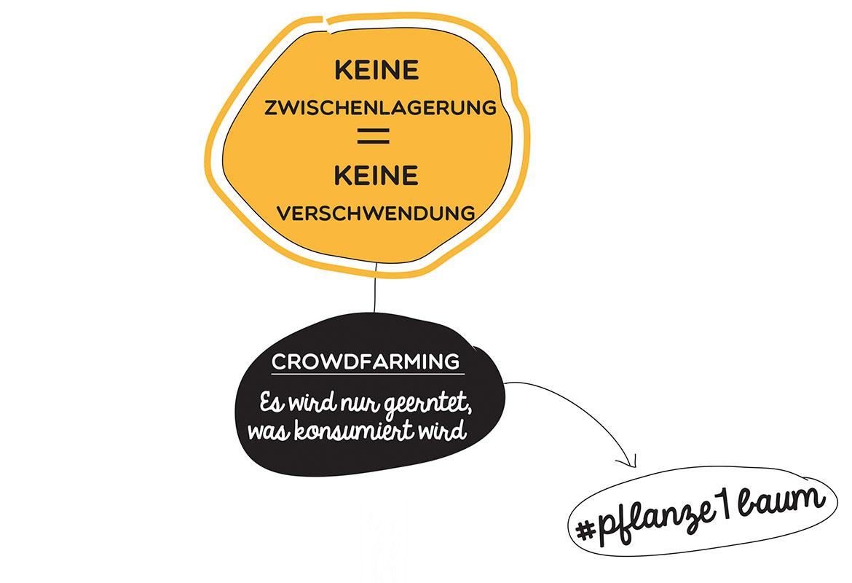 Keine zwischenlagerung = keini verschwendung, Crowdfarming harvest only what will be consumed, #plant1tree