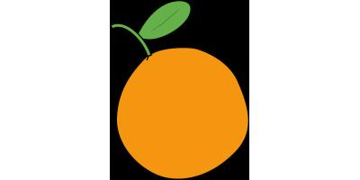 Caisse de 10kg d'Oranges