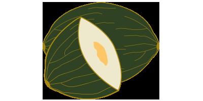 Melón piel de sapo Ricura<br>(~3kg)