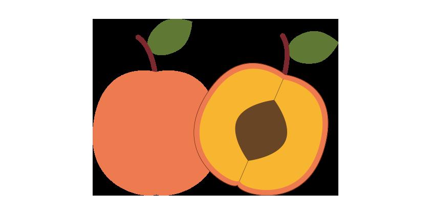 Aprikosen (5kg)